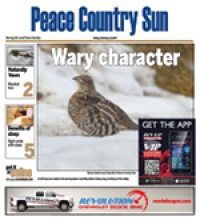 Grande Prairie Peace Country Sun